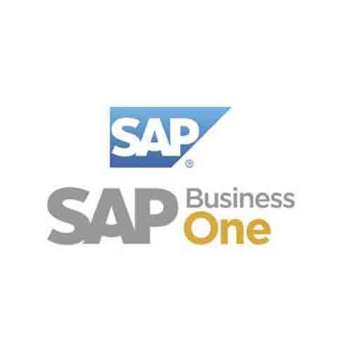 Lanzamiento SAP Business One